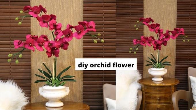 Bunga Anggrek Hiasan Ruang Tamu | Ide Rumah Minimalis