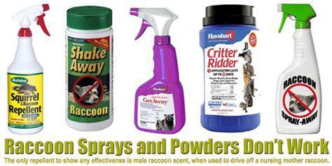 Raccoon Repellent Spray Powder   Deterrent to Keep Raccoons Away