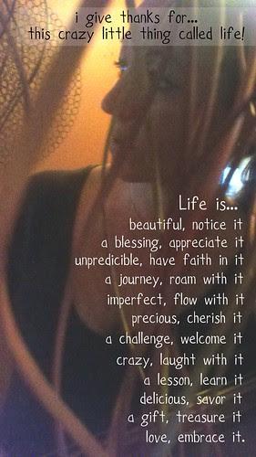 {Gratitude} Day 30 ~ Life