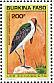 Marabou Stork Leptoptilos crumenifer
