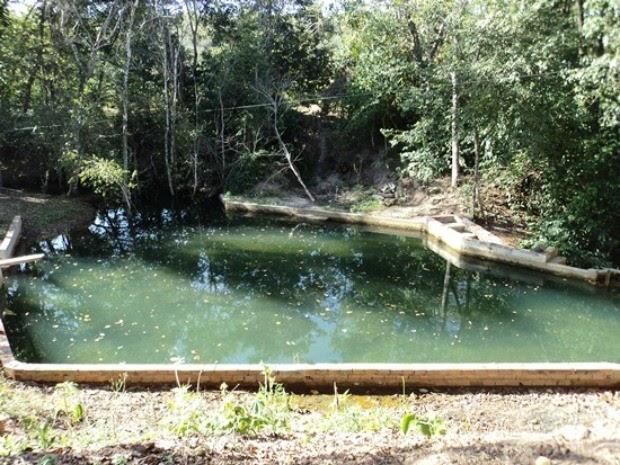 Seridozando blogspot com homem multado por destruir - Construir piscina natural ...