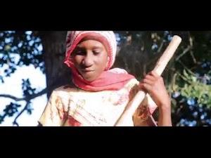 Download Video   Sirsedenga - Wabariki