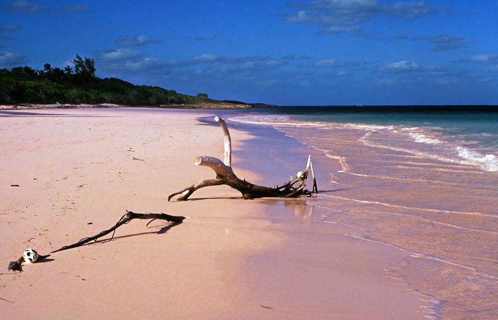 Bahamas 1989 (347) Eleuthera: Pink Sand, Harbour Island