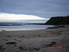 Summerland Beach, Penguin Parade, Philip Island, Australia