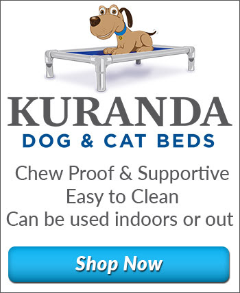 Kuranda Dog Beds - Rethinking dog beds
