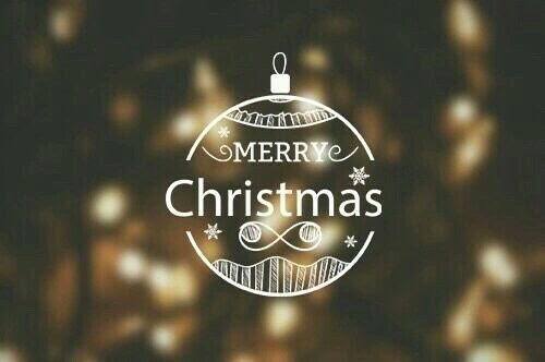Cute Merry Christmas Ornament Quote Pictures Photos And Images For