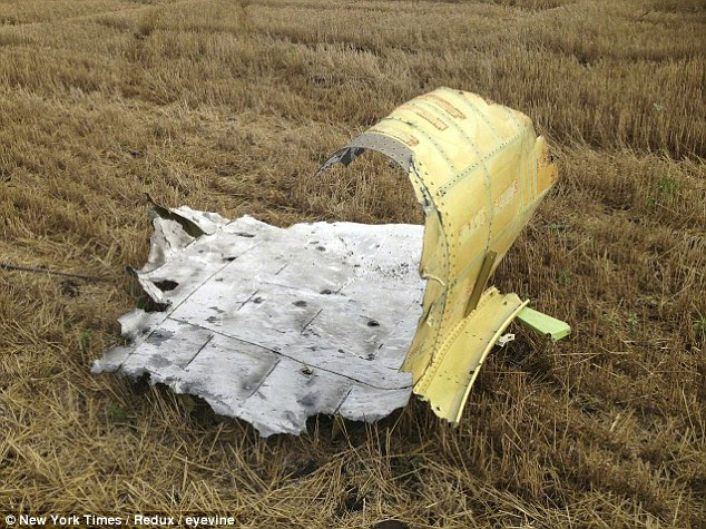 A piece of wreckage from Malaysia Airlines Flight 17, in a field near Rozsypne in the eastern Ukraine