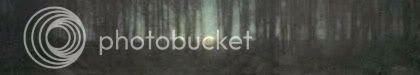 Sección de The Pond-Moonlight, por Edward Steichen.
