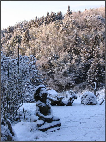 06 early morning Buddha