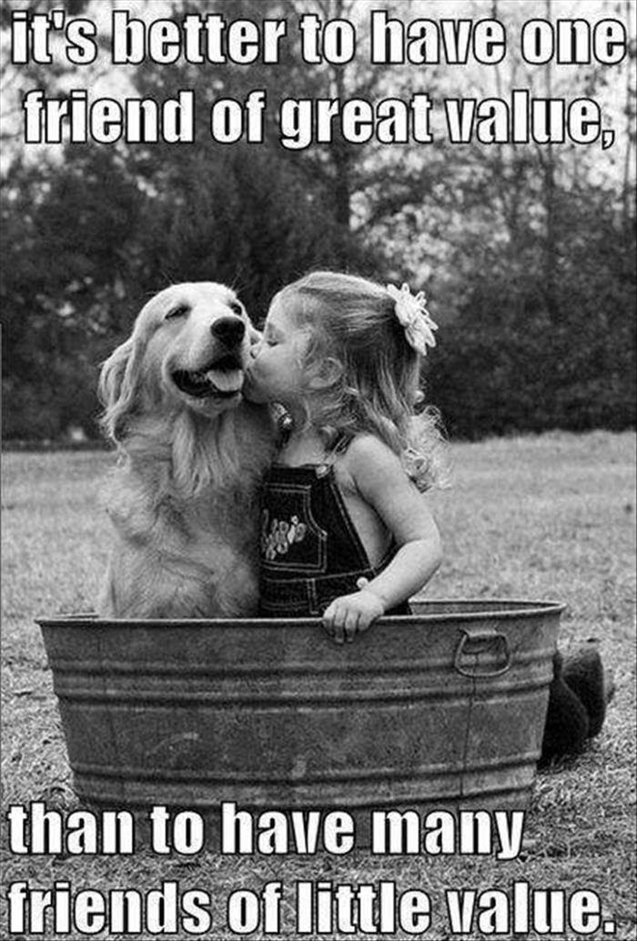 Girls Quotes Dog True Friends Picturesms Wwwpicturesbosscom