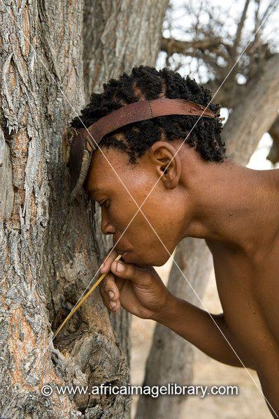 gfodcMrY8hbjzl5KvjhZBr0NpHiebIZUgogfHeEqge3fAvlGtSOTQm8BapGaYB7HXJ4vf5pERzfQEu8YQf648w6ekr5uHgvIIxCnyE5YKnl8etXUqjayMMowD73Y zZ5XGrBEmilupum93lo9 Artp0=s0 d San Bushmen People, The World Most Ancient Race People In Africa