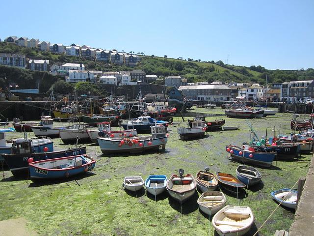 Cornwall May 2011 259