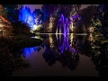 AMAZING..!!! Botanic Gardens Edinburgh Light Show YouTube