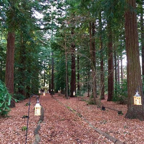 woods estate  totally stunning wedding venue