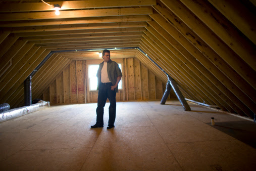 How to Remove Toxic Mold in Your Home