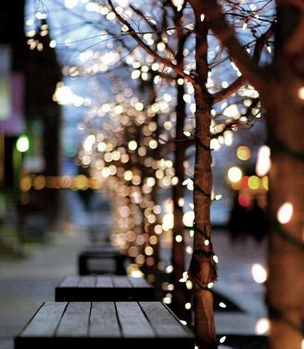 Resultado de imagen de luces de navidad tumblr