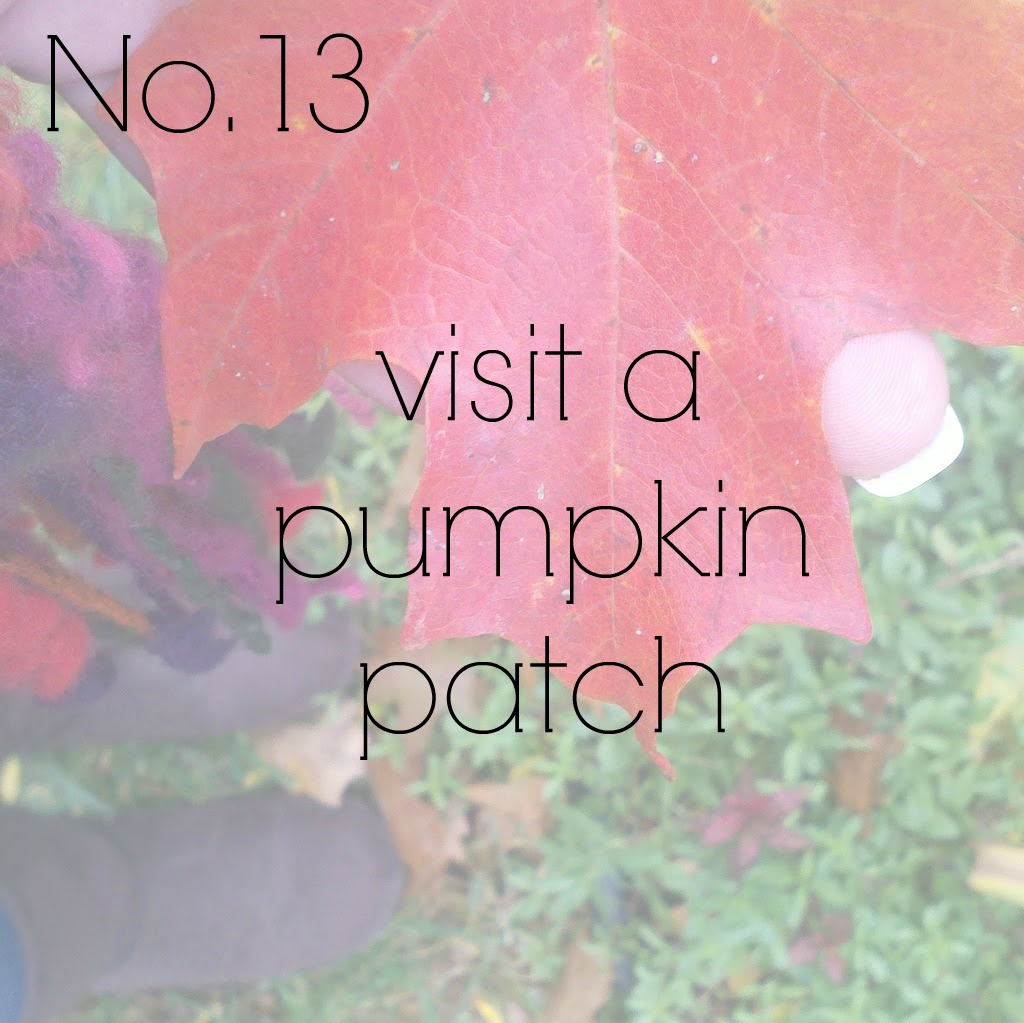 No. 13 {pumpkin patch}