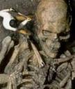 Fosil Nabi Adam2