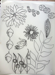 flower velum