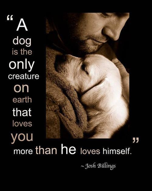Unconditional Loveget some today!  I am so a Dog