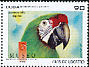 Military Macaw Ara militaris