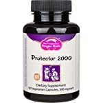 Dragon Herbs Protector 2000 – 500 mg -100 Capsules