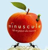 pomme_rouge_avec_ver_logo_animation_minuscule