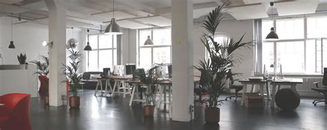 office design decoration trends   archyi