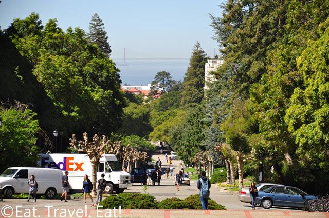 UC Berkeley, Berkeley, CA- View From Sather Tower- Ocean