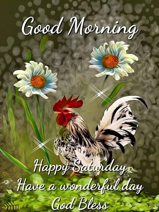 Good Morning Happy Saturday Have A Wonderful Day God Bless Pictures