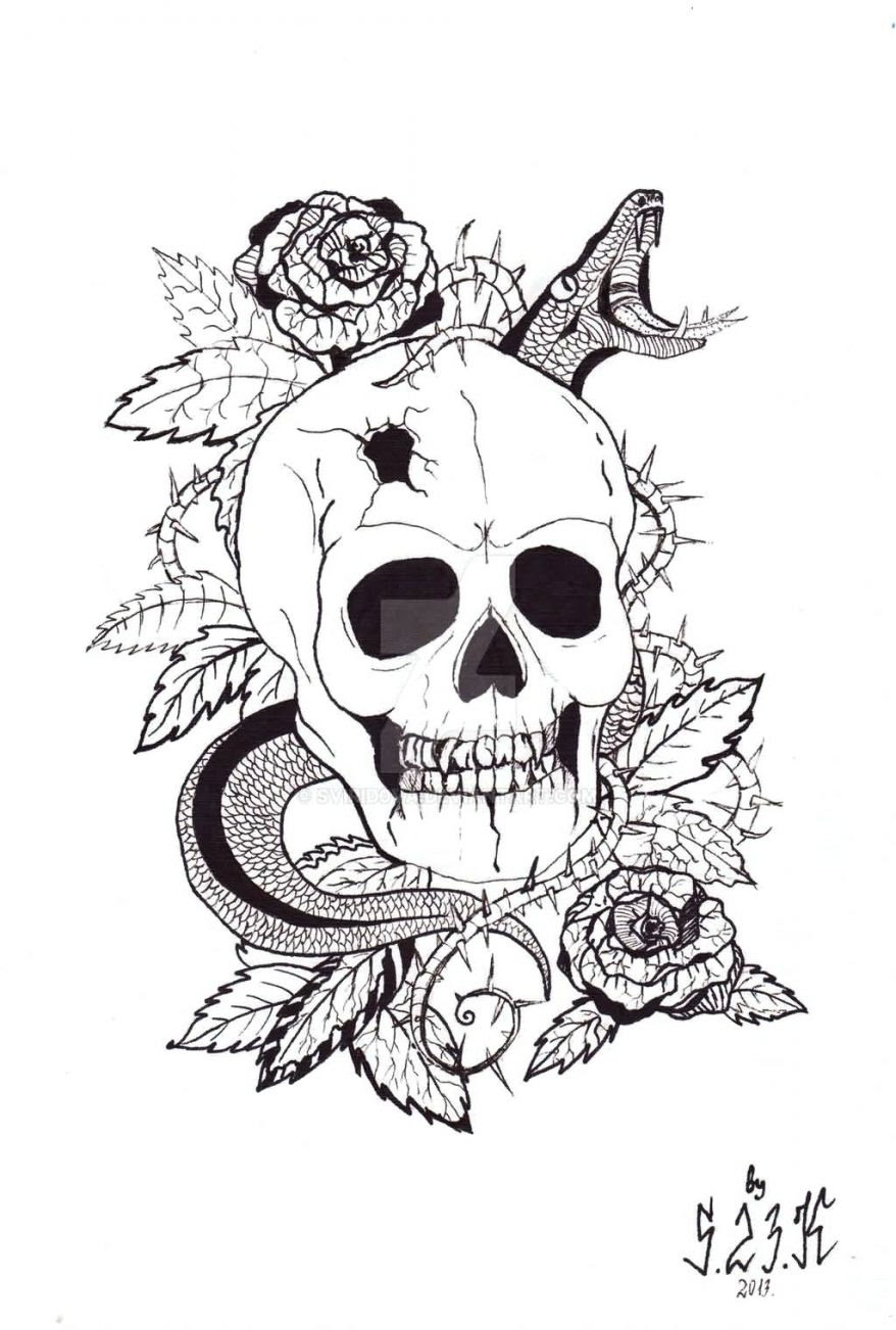 Rose Drawing Outline Free Download Best Rose Drawing Outline On
