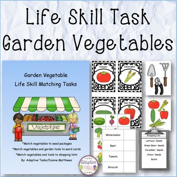 Garden Vegetable Life Skill Matching Task