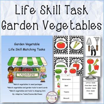 Garden Vegetable Life Skill Matching Task