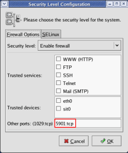 Open TCP port 5901 for remote access