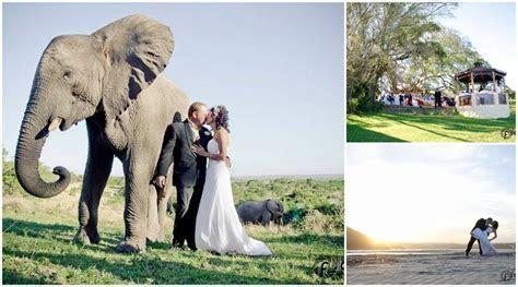 Inkwenkwezi Game Reserve ? South African Wedding Venues