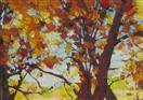 Aspen Grove, Red Trees