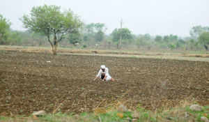 Enough food stock to fight weak monsoon: Govt