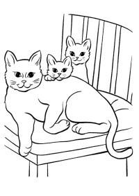 Download Disegni Da Colorare Dei Gatti Le Migliori Immagini Da