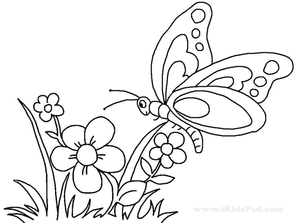 Butterfly And Flower Coloring Pages For Adults at ...