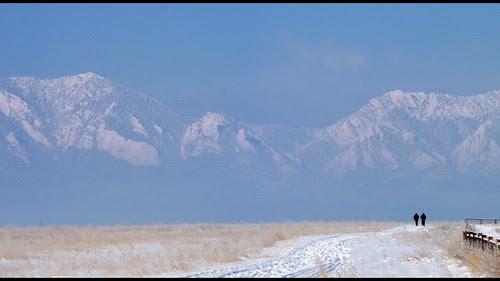 2010.02.22 On the Davidson Mesa