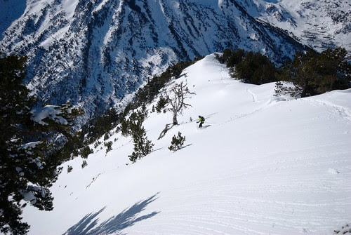 Dropping into the bowl