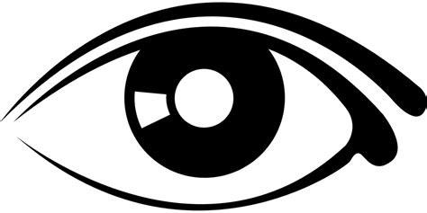 mata manusia bola gambar vektor gratis  pixabay
