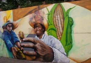 Mural en las inmediaciones semi-rurales de Magdalena Contreras, una de las delegaciones del Distrito Federal, México. Foto: Prometeo Lucero