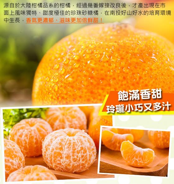 鮮採/多汁/珍珠/砂糖橘/水果/橘子/柑橘/季節/限定/甜/採收/秋/冬/必吃
