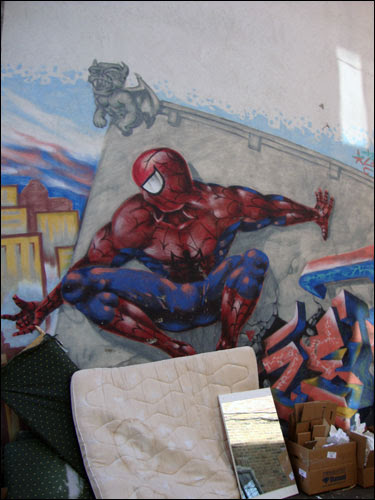 Spiderman mural around the back of  Plateaua area comic book store Millenium