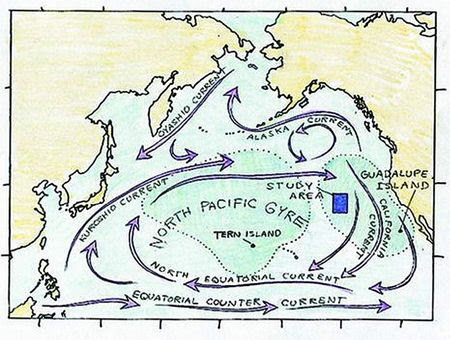 Map of the Gyre