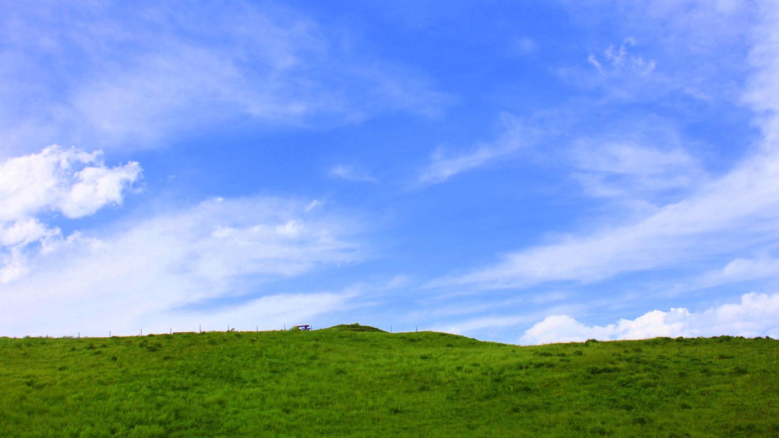 Xp 壁紙 草原