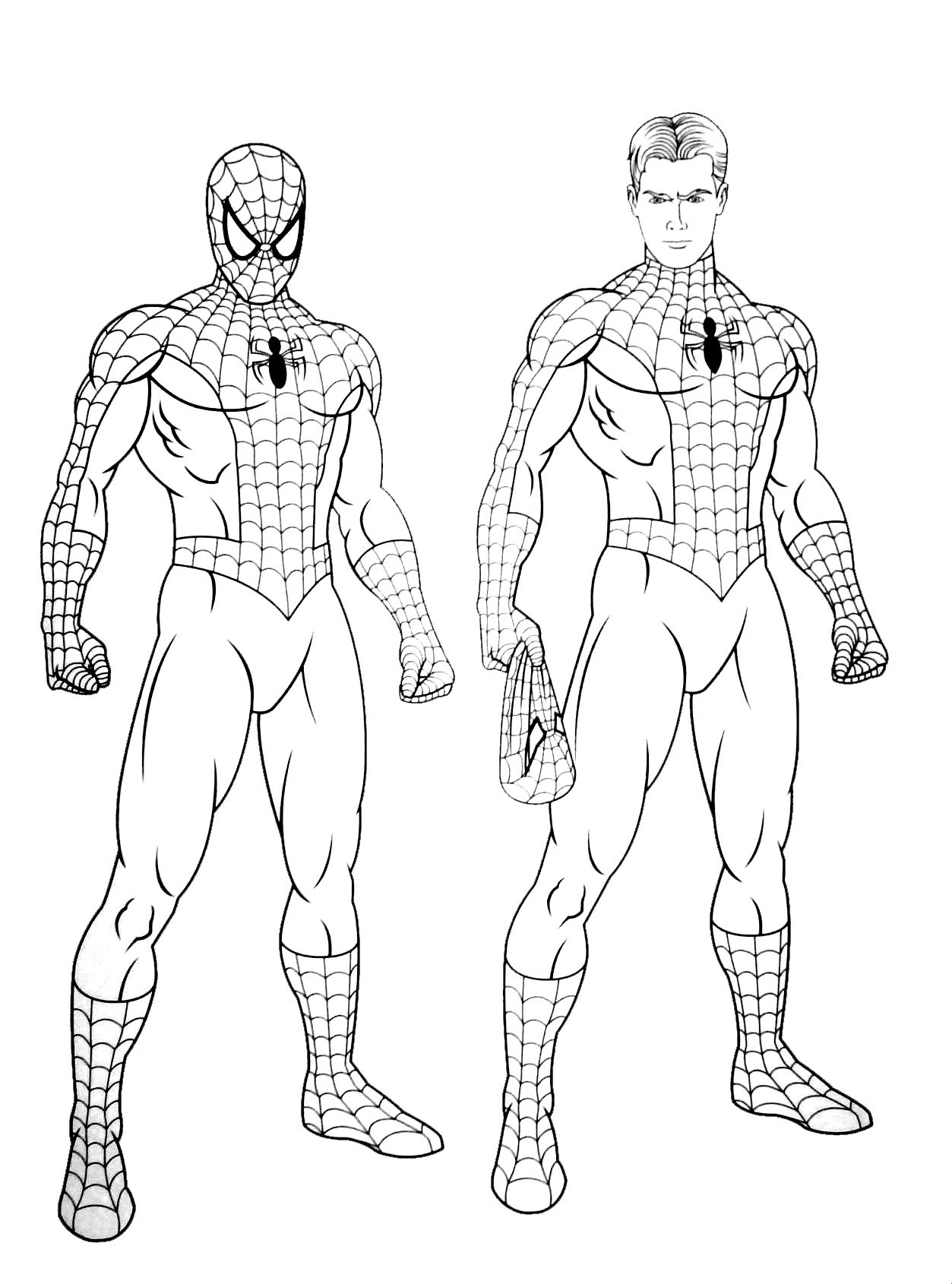 10 FREE SPIDERMAN HULK COLORING PAGES PDF PRINTABLE DOCX ...