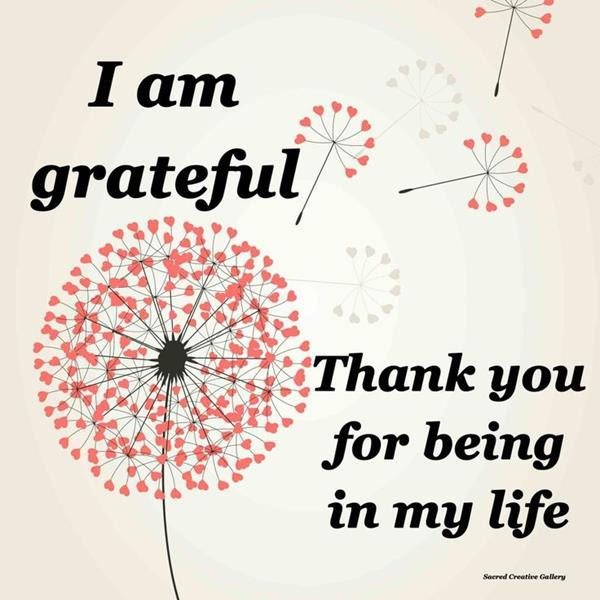Thank You Quote Photo 9248 Hdwpro