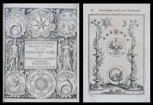 Anatomia auri, sive Tyrocinium medico-chymicum 1628